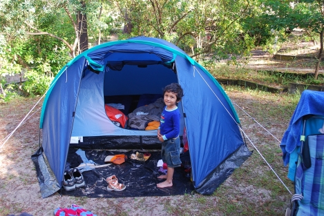 camping near Bordeax, France https://selimfamily.com/2014/06/23/amidst-black-bulls-white-horses-and-pink-flamingoscamping-around-southwest-france/
